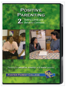 Positive Parenting 2 DVD Box