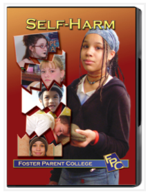 Self Harm DVD Box